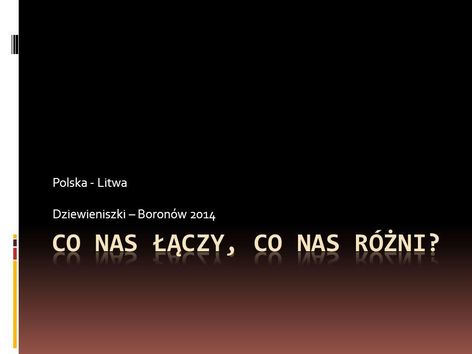 Powitanie – 20.08.2014 W środowe popołudnie powitaliśmy w naszej szkole chlebem i solą 9-osobową grupę młodzieży z polskiej szkoły na Litwie wraz z dwiema opiekunkami –panią Jadwiga Tużyk i Marią Stasiukiewic.