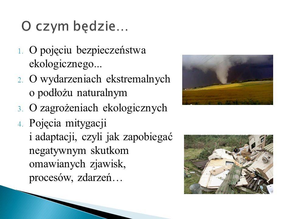 1.O pojęciu bezpieczeństwa ekologicznego... 2.