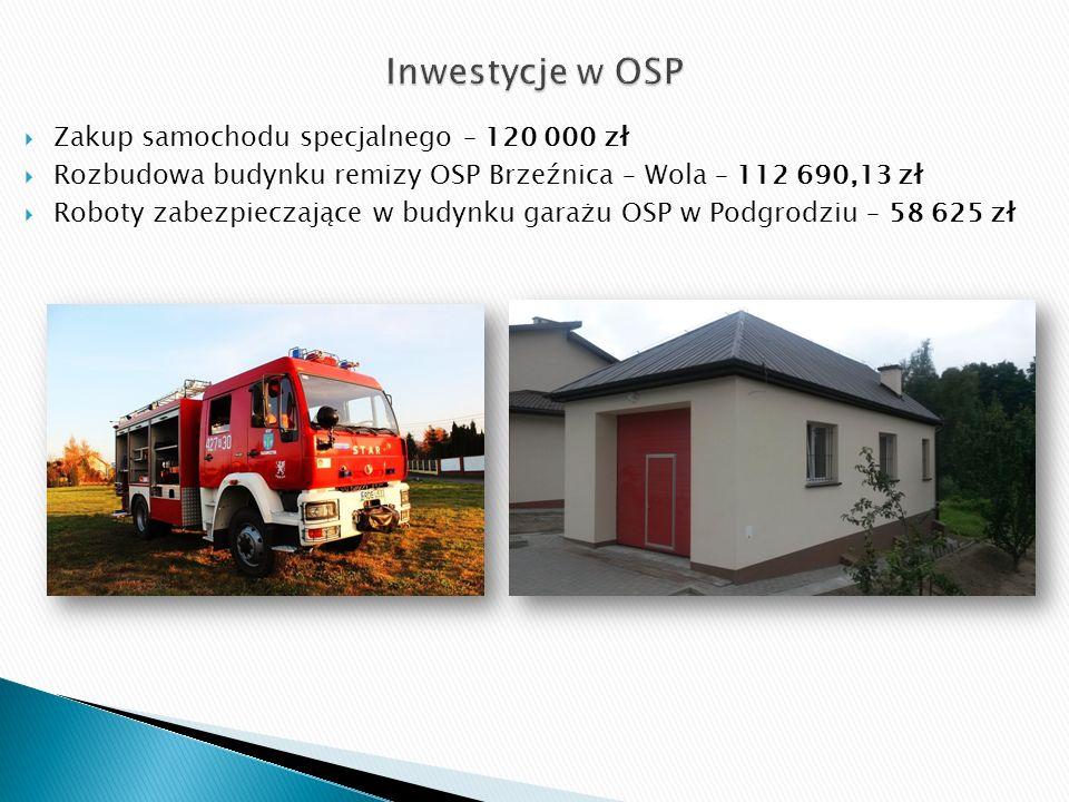  Zakup samochodu specjalnego – 120 000 zł  Rozbudowa budynku remizy OSP Brzeźnica – Wola – 112 690,13 zł  Roboty zabezpieczające w budynku garażu OSP w Podgrodziu – 58 625 zł