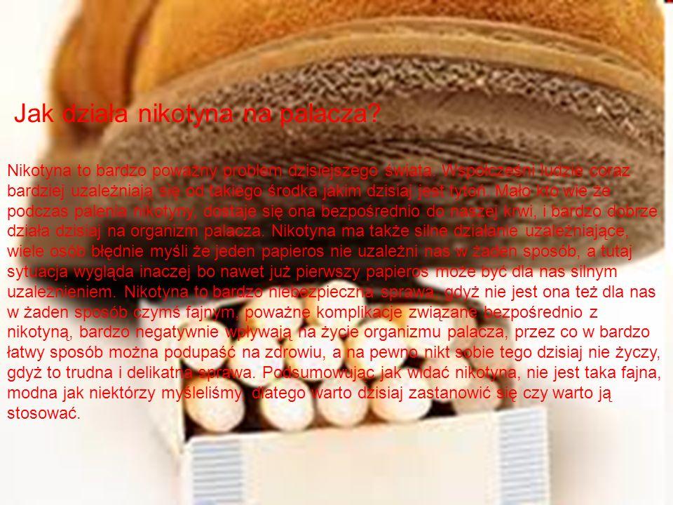 Jak działa nikotyna na palacza? Nikotyna to bardzo poważny problem dzisiejszego świata. Współcześni ludzie coraz bardziej uzależniają się od takiego ś