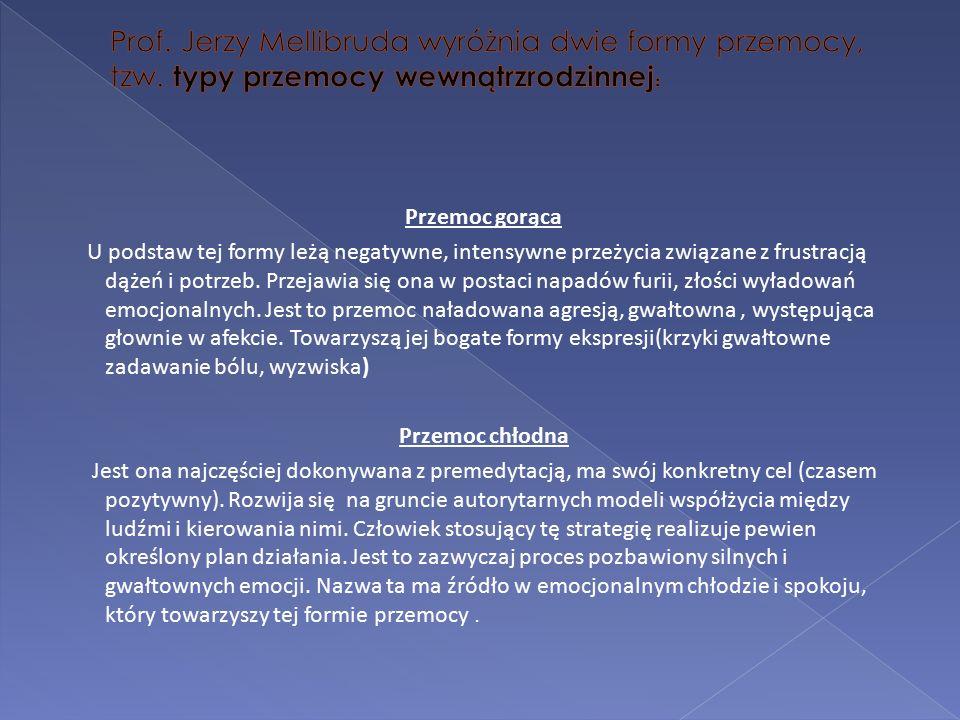  Powiatowo-Gminny Punkt Interwencji Kryzysowej ul.
