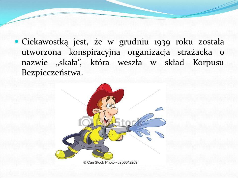 Wykonywanie zadań wynikających z przepisów o ochronie przeciwpożarowej, Działania na rzecz ochrony środowiska, Wspomaganie rozwoju społeczności lokalnych na własnym terenie Wykonywanie innych zadań określonych w statucie OSP, Występy na zawodach sportowo- pożarniczych.