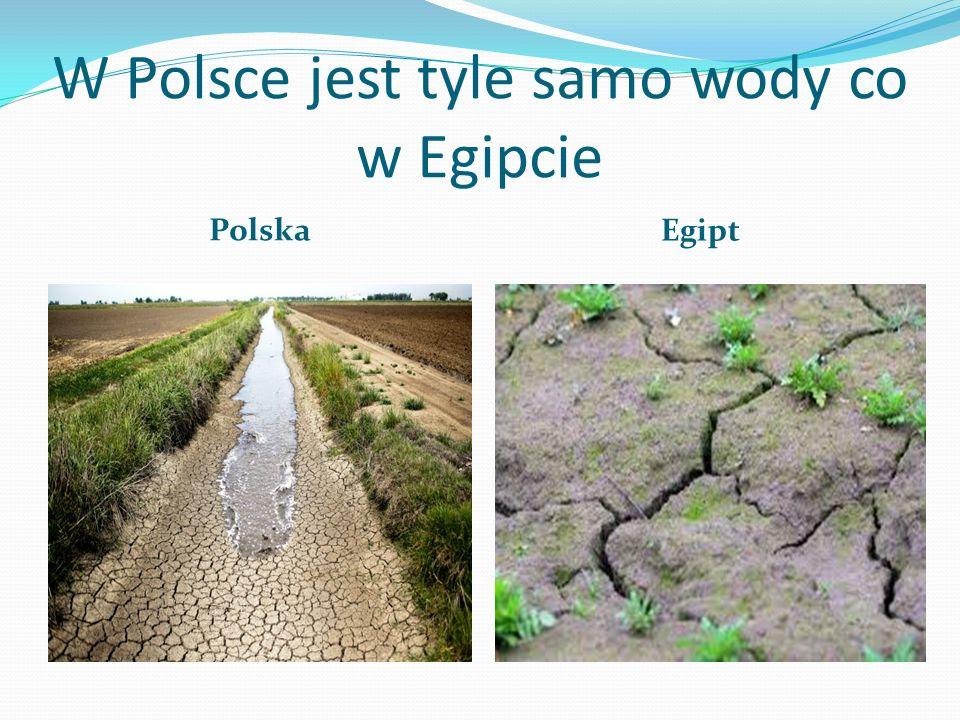 W Polsce jest tyle samo wody co w Egipcie Polska Egipt