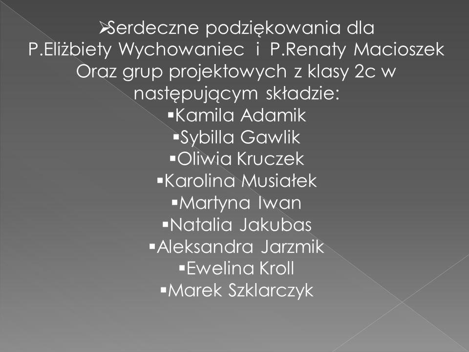  Serdeczne podziękowania dla P.Eliżbiety Wychowaniec i P.Renaty Macioszek Oraz grup projektowych z klasy 2c w następującym składzie:  Kamila Adamik
