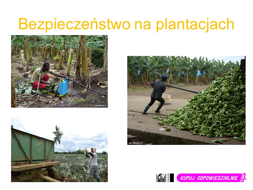 Bezpieczeństwo na plantacjach