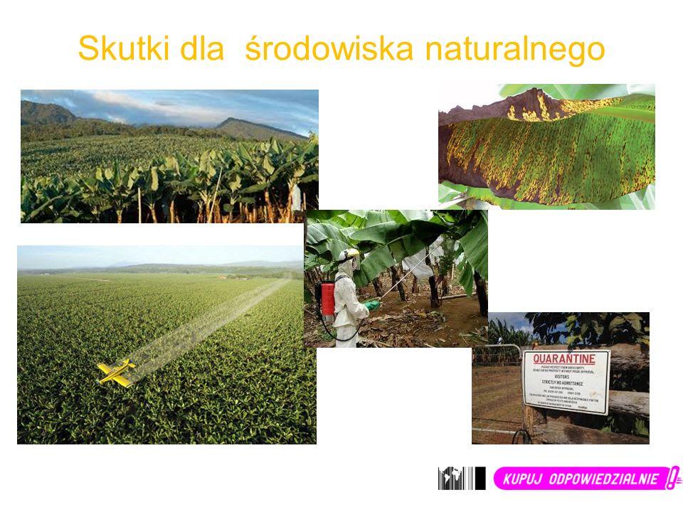 Skutki dla środowiska naturalnego