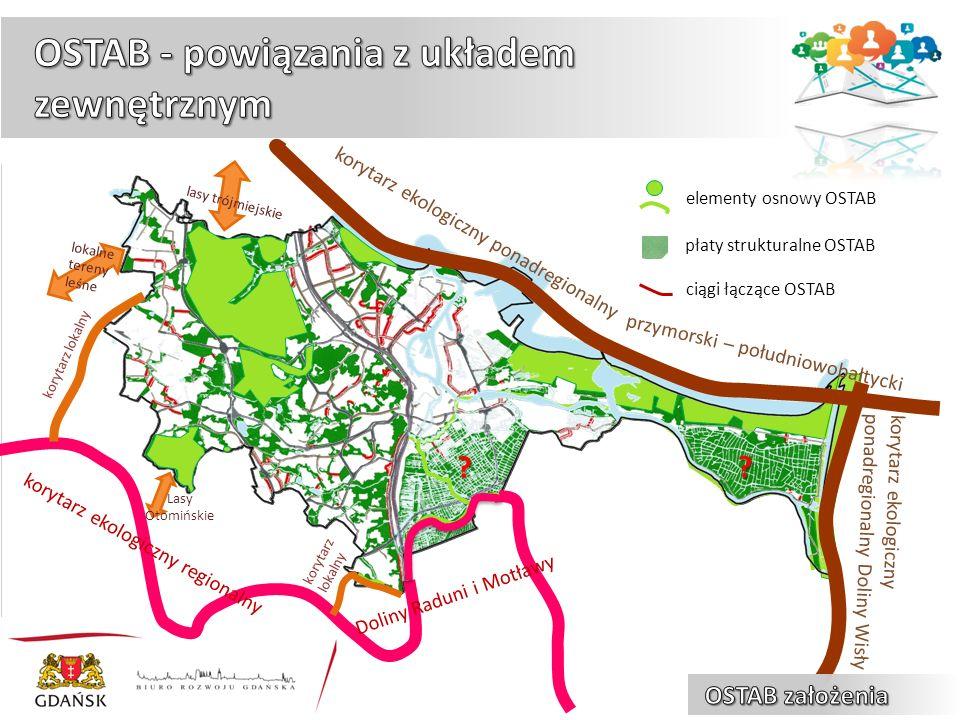 elementy osnowy OSTAB płaty strukturalne OSTAB ciągi łączące OSTAB korytarz ekologiczny ponadregionalny korytarz ekologiczny ponadregionalny Doliny Wisły przymorski – południowobałtycki Doliny Raduni i Motławy korytarz ekologiczny regionalny .