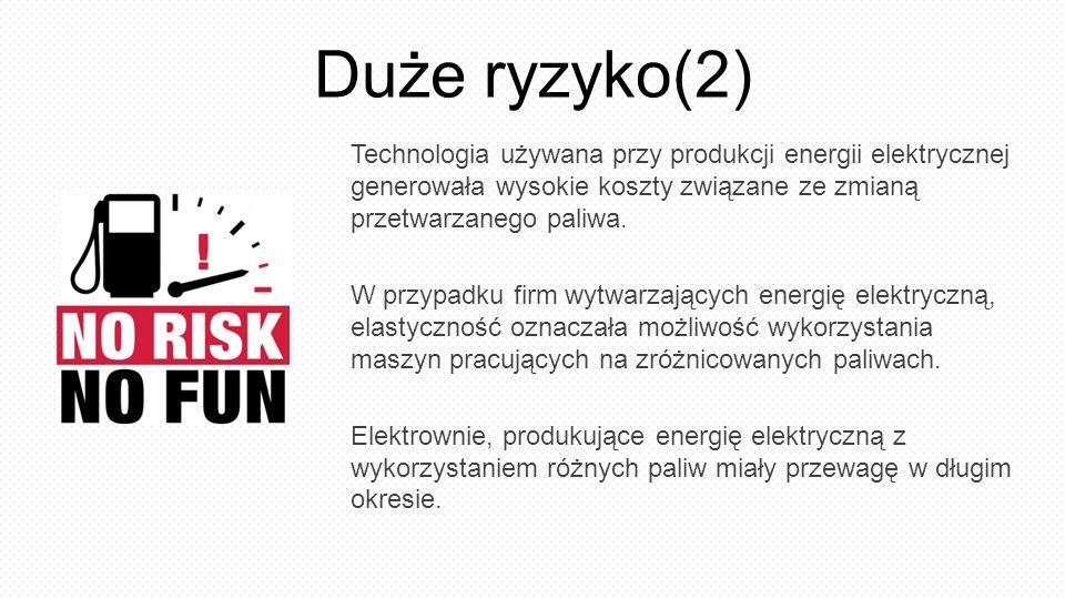 Duże ryzyko(2) Technologia używana przy produkcji energii elektrycznej generowała wysokie koszty związane ze zmianą przetwarzanego paliwa. W przypadku