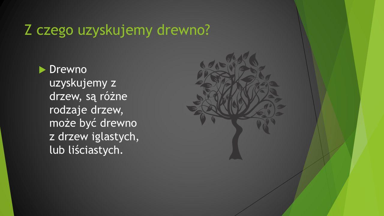 Z czego uzyskujemy drewno?  Drewno uzyskujemy z drzew, są różne rodzaje drzew, może być drewno z drzew iglastych, lub liściastych.