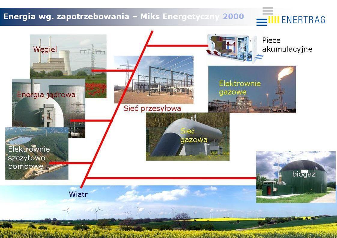 13.08.2009 Energia wg. zapotrzebowania – Miks Energetyczny 2000 Elektowne szczytowo pompowe