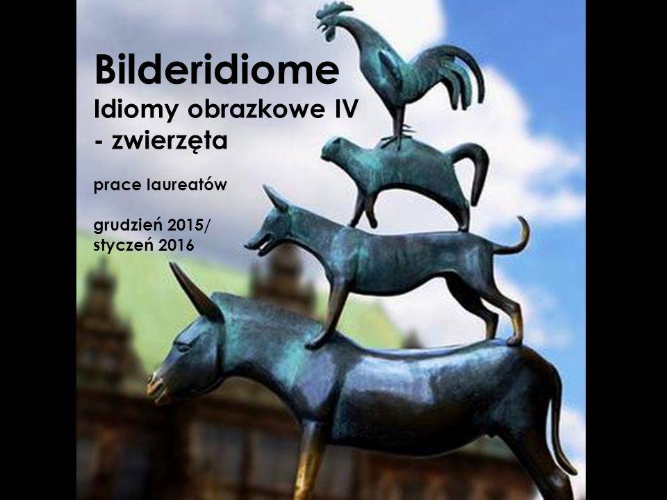 jjj Bilderidiome Idiomy obrazkowe IV - zwierzęta prace laureatów grudzień 2015/ styczeń 2016