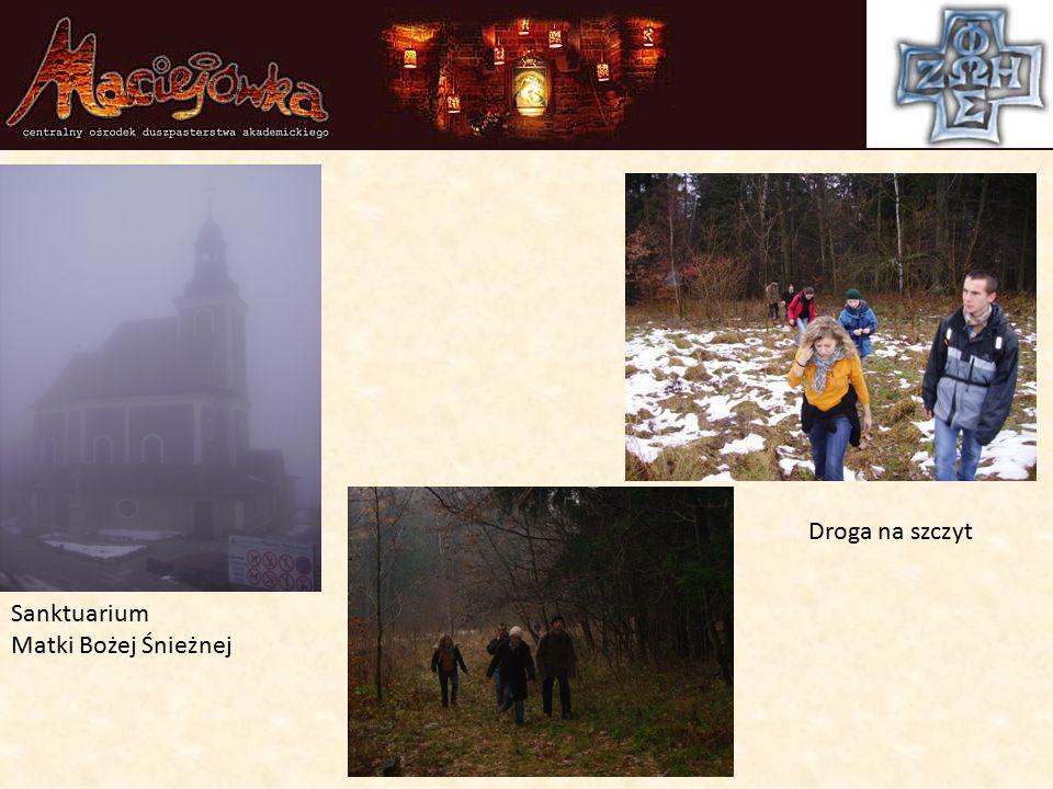 Sanktuarium Matki Bożej Śnieżnej Droga na szczyt