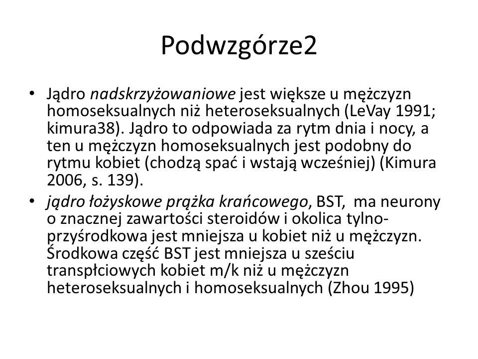 Podwzgórze2 Jądro nadskrzyżowaniowe jest większe u mężczyzn homoseksualnych niż heteroseksualnych (LeVay 1991; kimura38). Jądro to odpowiada za rytm d