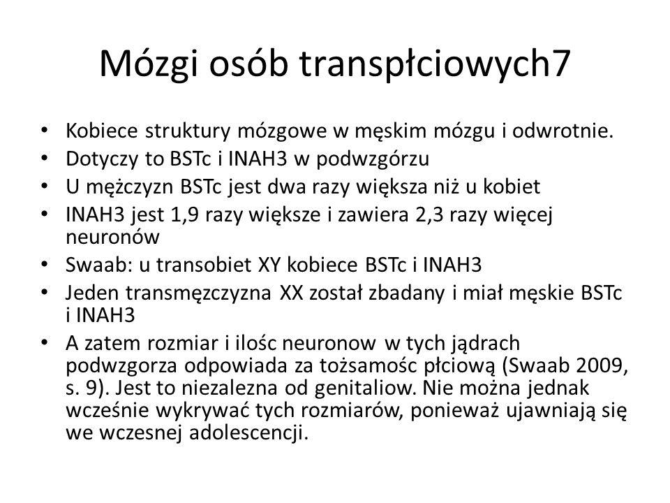 Mózgi osób transpłciowych7 Kobiece struktury mózgowe w męskim mózgu i odwrotnie. Dotyczy to BSTc i INAH3 w podwzgórzu U mężczyzn BSTc jest dwa razy wi