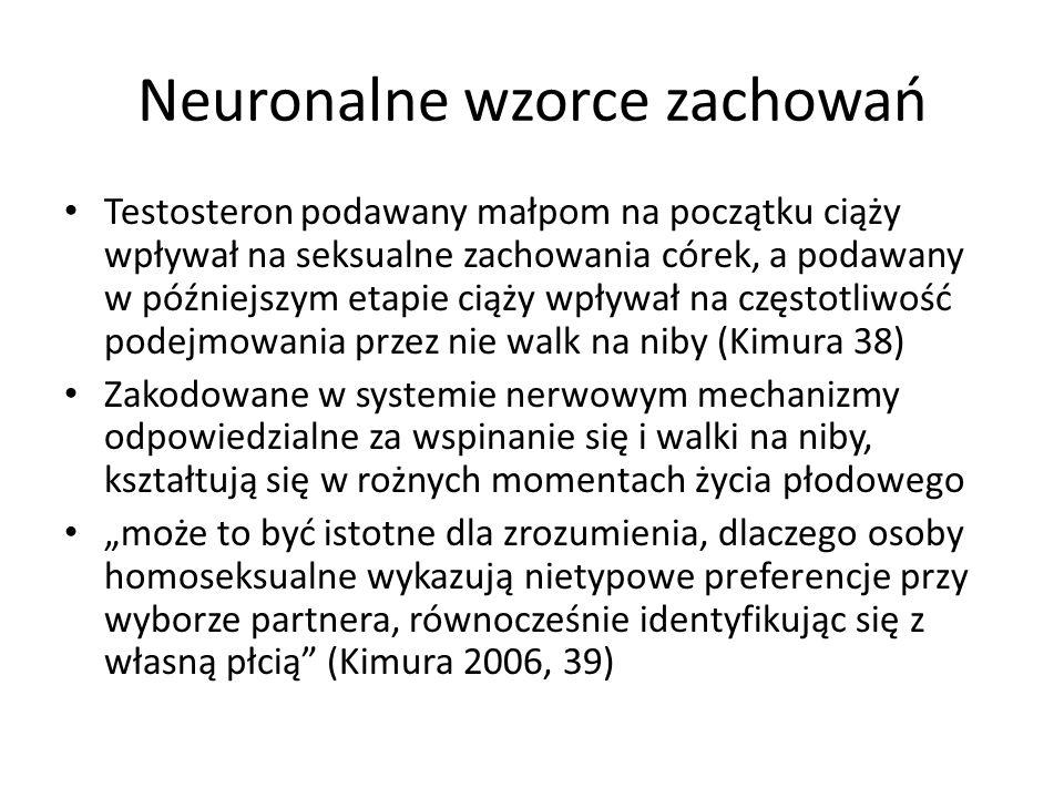 """Neuronalne wzorce zachowań Testosteron podawany małpom na początku ciąży wpływał na seksualne zachowania córek, a podawany w późniejszym etapie ciąży wpływał na częstotliwość podejmowania przez nie walk na niby (Kimura 38) Zakodowane w systemie nerwowym mechanizmy odpowiedzialne za wspinanie się i walki na niby, kształtują się w rożnych momentach życia płodowego """"może to być istotne dla zrozumienia, dlaczego osoby homoseksualne wykazują nietypowe preferencje przy wyborze partnera, równocześnie identyfikując się z własną płcią (Kimura 2006, 39)"""
