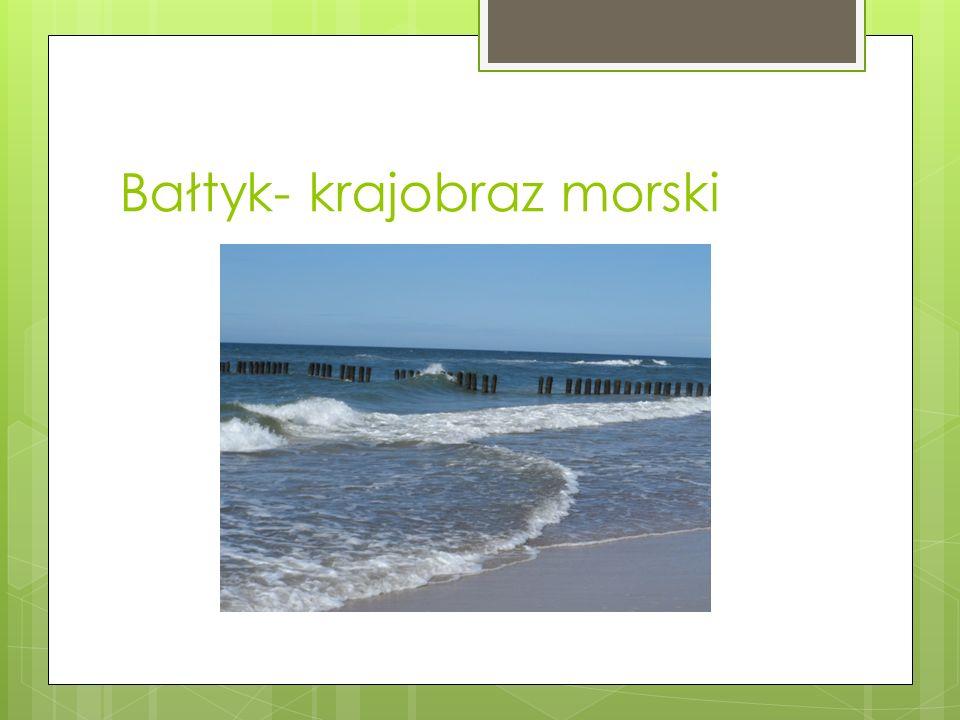 Bałtyk- krajobraz morski