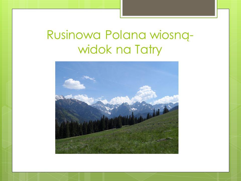 Rusinowa Polana wiosną- widok na Tatry