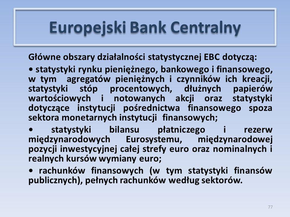 Główne obszary działalności statystycznej EBC dotyczą: statystyki rynku pieniężnego, bankowego i finansowego, w tym agregatów pieniężnych i czynników ich kreacji, statystyki stóp procentowych, dłużnych papierów wartościowych i notowanych akcji oraz statystyki dotyczące instytucji pośrednictwa finansowego spoza sektora monetarnych instytucji finansowych; statystyki bilansu płatniczego i rezerw międzynarodowych Eurosystemu, międzynarodowej pozycji inwestycyjnej całej strefy euro oraz nominalnych i realnych kursów wymiany euro; rachunków finansowych (w tym statystyki finansów publicznych), pełnych rachunków według sektorów.