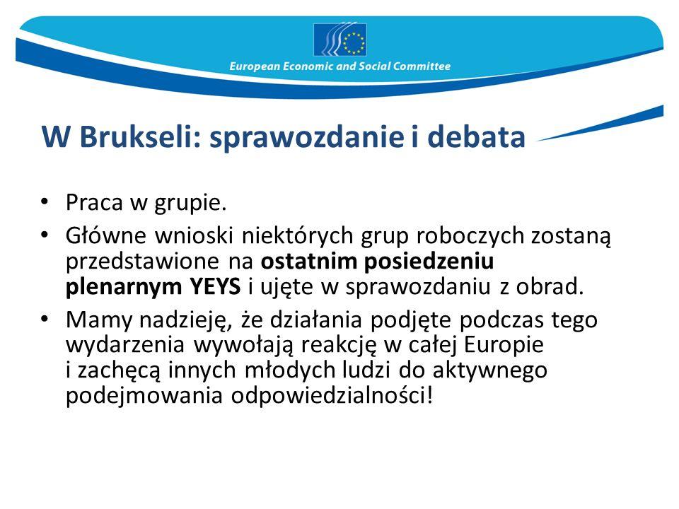 W Brukseli: sprawozdanie i debata Praca w grupie. Główne wnioski niektórych grup roboczych zostaną przedstawione na ostatnim posiedzeniu plenarnym YEY