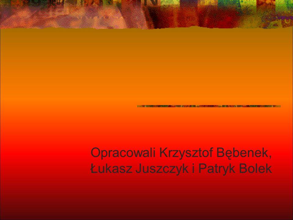 Opracowali Krzysztof Bębenek, Łukasz Juszczyk i Patryk Bolek
