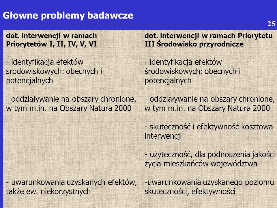 6 Głowne problemy badawcze dot.