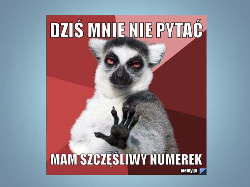 Mamy dwóch przedstawicieli naszej szkoły w Młodzieżowej Radzie Bielan: Maję Błaszkiewicz i Antka Kubiaka z kl.