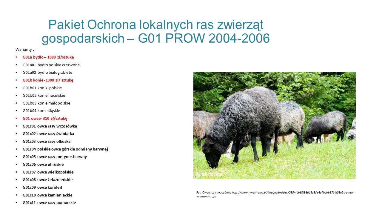 Pakiet Ochrona lokalnych ras zwierząt gospodarskich – G01 PROW 2004-2006 Warianty : G01a bydło – 1080 zł/sztukę G01a01 bydło polskie czerwone G01a02 bydło białogrzbiete G01b konie- 1300 zł/ sztukę G01b01 koniki polskie G01b02 konie huculskie G01b03 konie małopolskie G01b04 konie śląskie G01 owce- 310 zł/sztukę G01c01 owce rasy wrzosówka G01c02 owce rasy świniarka G01c03 owce rasy olkuska G01c04 polskie owce górskie odmiany barwnej G01c05 owce rasy merynos barwny G01c06 owce uhruskie G01c07 owce wielkopolskie G01c08 owce żelaźnieńskie G01c09 owce korideil G01c10 owce kamienieckie G01c11 owce rasy pomorskie Fot.