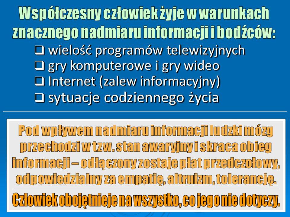  wielość programów telewizyjnych  gry komputerowe i gry wideo  Internet (zalew informacyjny)  sytuacje codziennego życia  wielość programów telewizyjnych  gry komputerowe i gry wideo  Internet (zalew informacyjny)  sytuacje codziennego życia