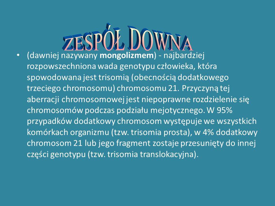 NETOGRAFIA fundacja.dandy-walker.org.pl - Fundacja chorych na zespół Dandy-Walkera