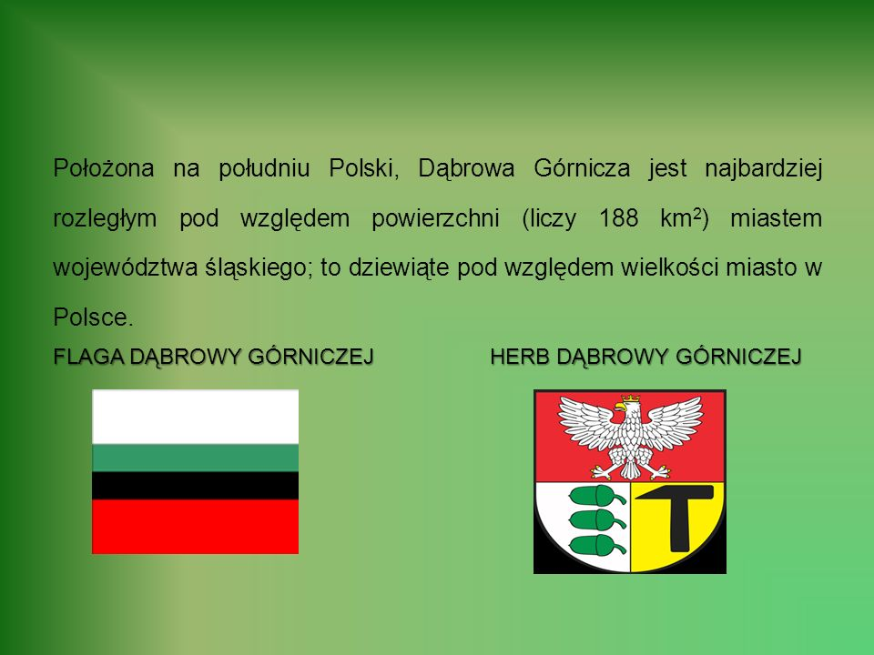 Położona na południu Polski, Dąbrowa Górnicza jest najbardziej rozległym pod względem powierzchni (liczy 188 km 2 ) miastem województwa śląskiego; to dziewiąte pod względem wielkości miasto w Polsce.