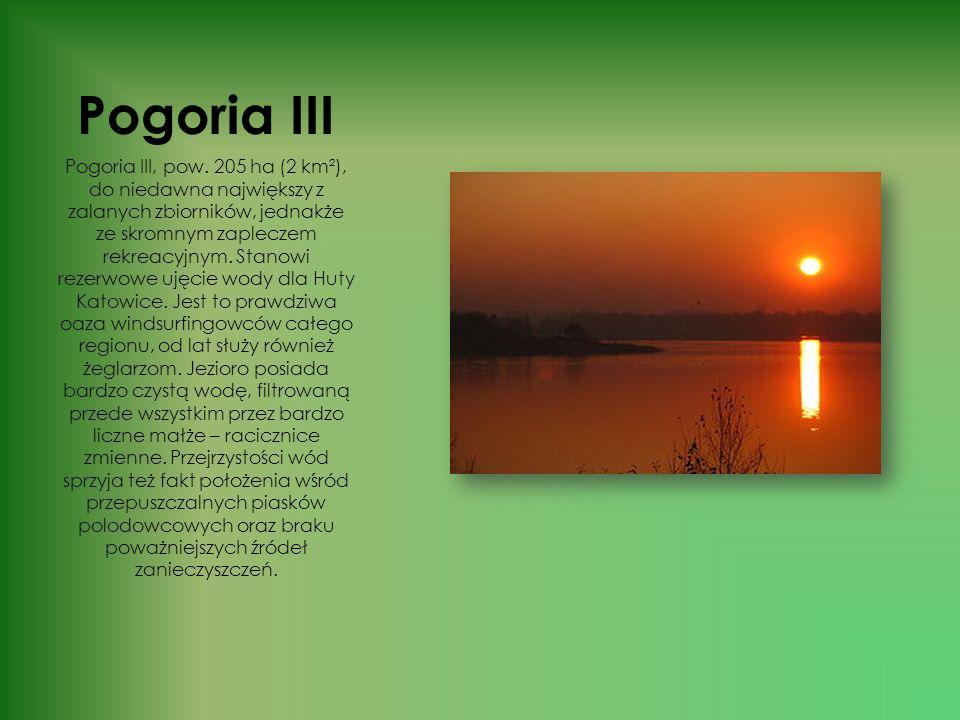 Pogoria II Pogoria II, pow. ok. 25 ha, obszar wyrobiska popiaskowego przed zalaniem został częściowo zasypany żyzną ziemią z nadkładu, przywożonego z