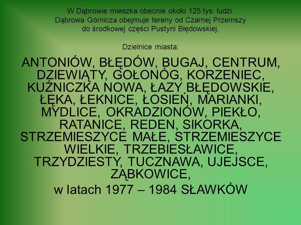 W Dąbrowie mieszka obecnie około 125 tys.ludzi.