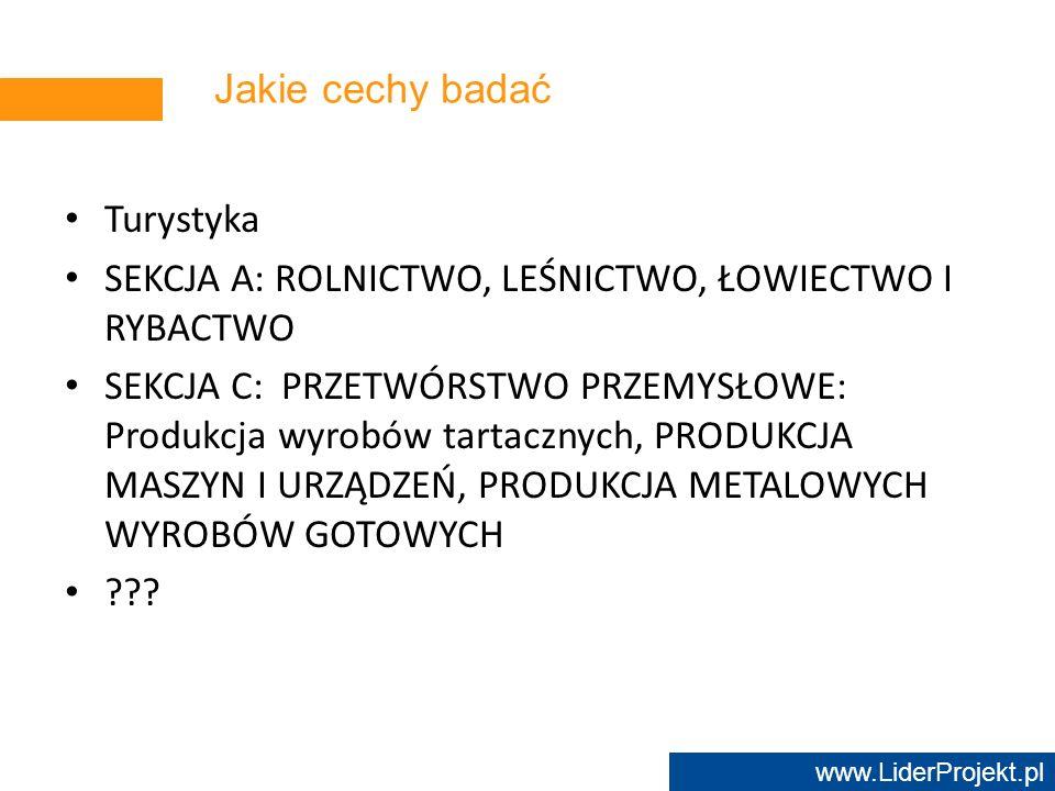 www.LiderProjekt.pl Jakie cechy badać Turystyka SEKCJA A: ROLNICTWO, LEŚNICTWO, ŁOWIECTWO I RYBACTWO SEKCJA C: PRZETWÓRSTWO PRZEMYSŁOWE: Produkcja wyr