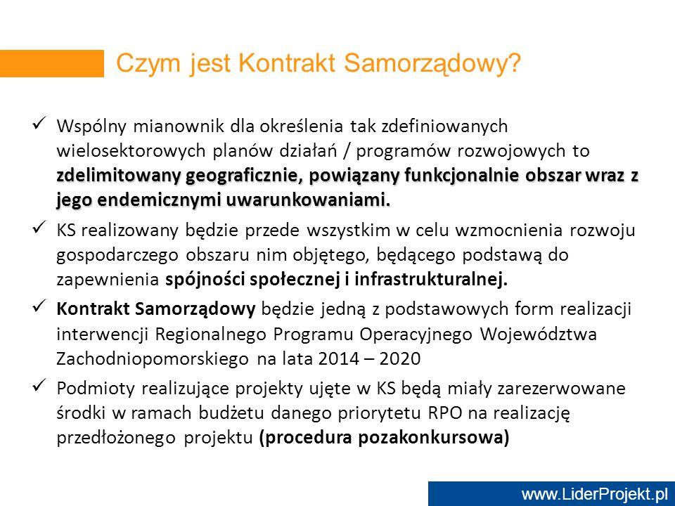 www.LiderProjekt.pl zdelimitowany geograficznie, powiązany funkcjonalnie obszar wraz z jego endemicznymi uwarunkowaniami. Wspólny mianownik dla określ