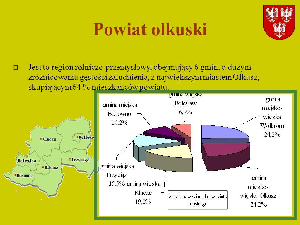 3 Powiat olkuski Jest to region rolniczo-przemysłowy, obejmujący 6 gmin, o dużym zróżnicowaniu gęstości zaludnienia, z największym miastem Olkusz, sku