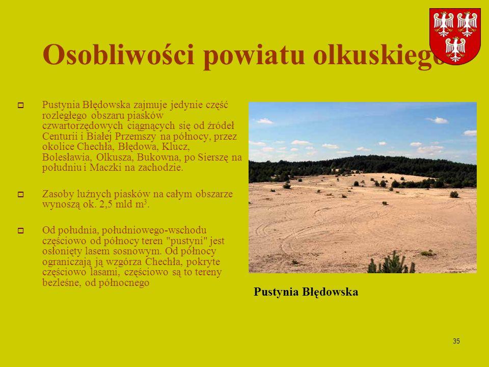 35 Osobliwości powiatu olkuskiego Pustynia Błędowska zajmuje jedynie część rozległego obszaru piasków czwartorzędowych ciągnących się od źródeł Centur