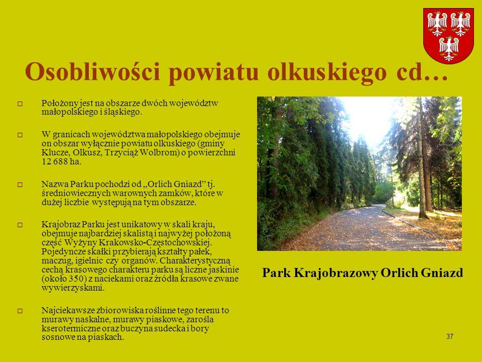 37 Osobliwości powiatu olkuskiego cd… Położony jest na obszarze dwóch województw małopolskiego i śląskiego. W granicach województwa małopolskiego obej
