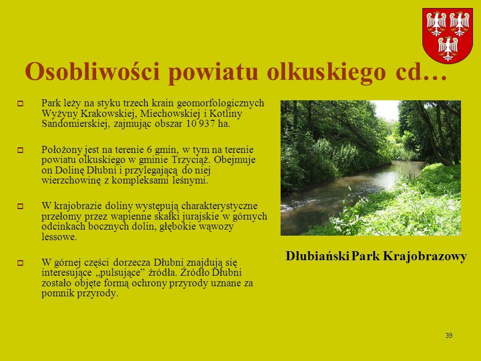 39 Osobliwości powiatu olkuskiego cd… Park leży na styku trzech krain geomorfologicznych Wyżyny Krakowskiej, Miechowskiej i Kotliny Sandomierskiej, za