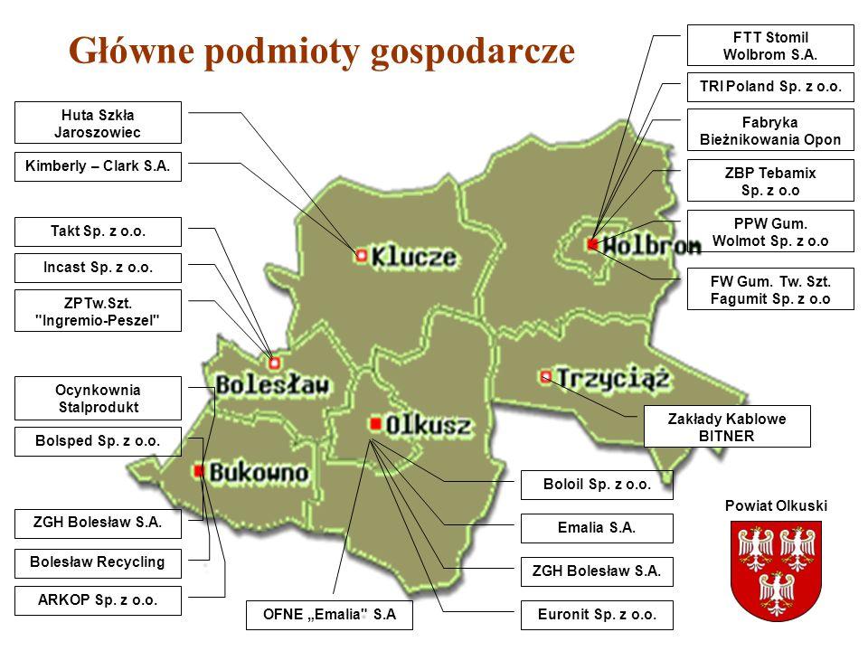 Główne podmioty gospodarcze ZGH Bolesław S.A. Bolesław Recycling ARKOP Sp. z o.o. Ocynkownia Stalprodukt Bolsped Sp. z o.o. ZGH Bolesław S.A. Emalia S