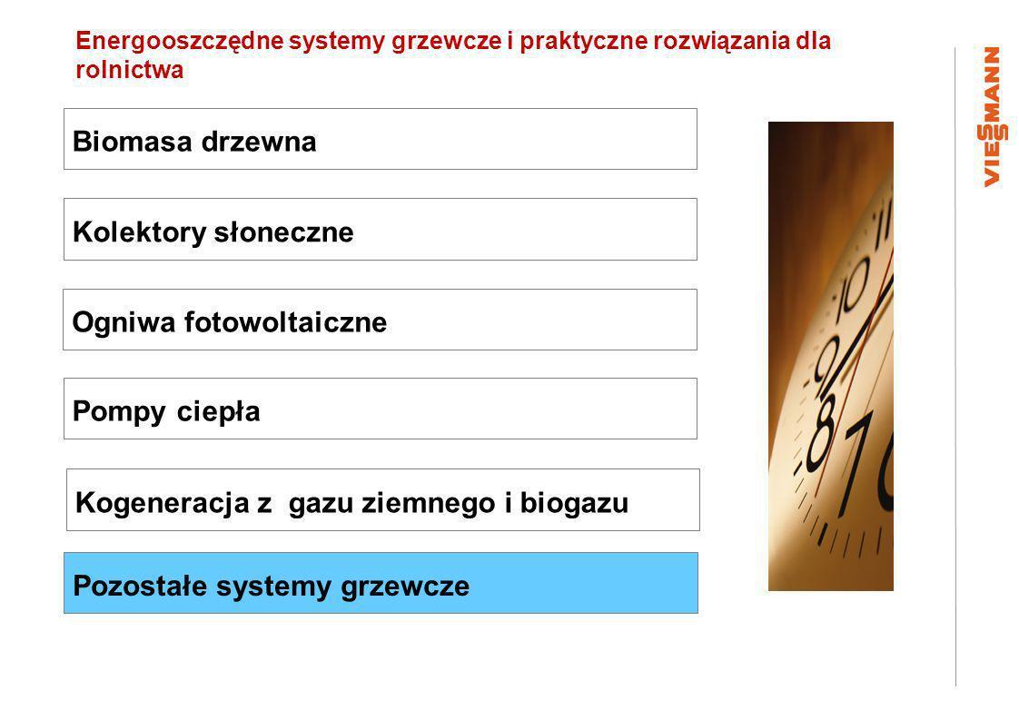 II ogólnopolskie Forum : Kierunki kontynuacji wsparcia grup producentów rolnych w nowym okresie programowania 2014 – 2020. Kogeneracja z gazu ziemnego