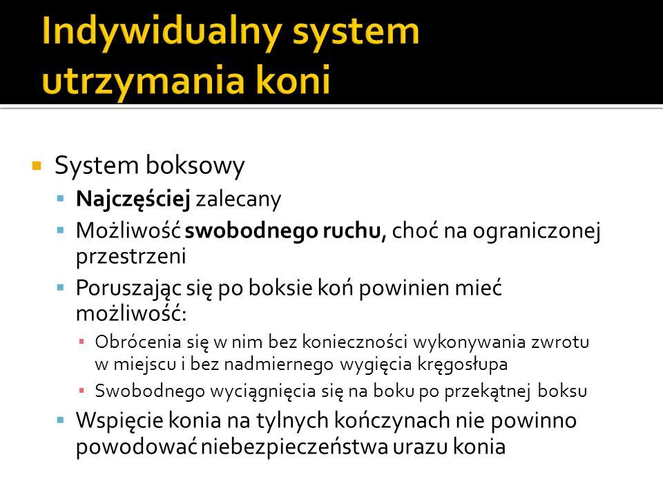 System boksowy