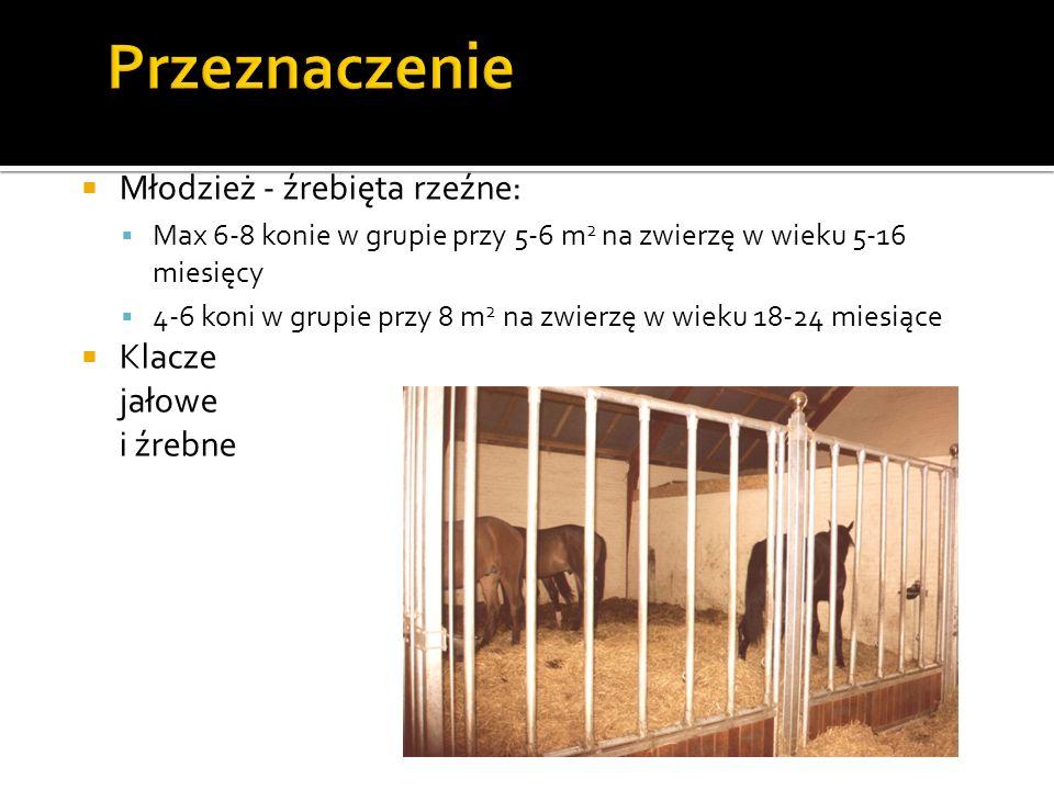 Stajnia jest cały czas otwarta, co umożliwia koniom wyjście na zewnątrz, na przyległy wybieg Ten system nie jest w Polsce rozpowszechniony Najlepszy system utrzymania Koń musi mieć możliwość termoregulacji behawioralnej i fizjologicznej Koń musi mieć schronienie przed słońcem i wilgocią: Zimno i sucho – dobrze tolerowane Zimno i wilgotno – źle (stres)
