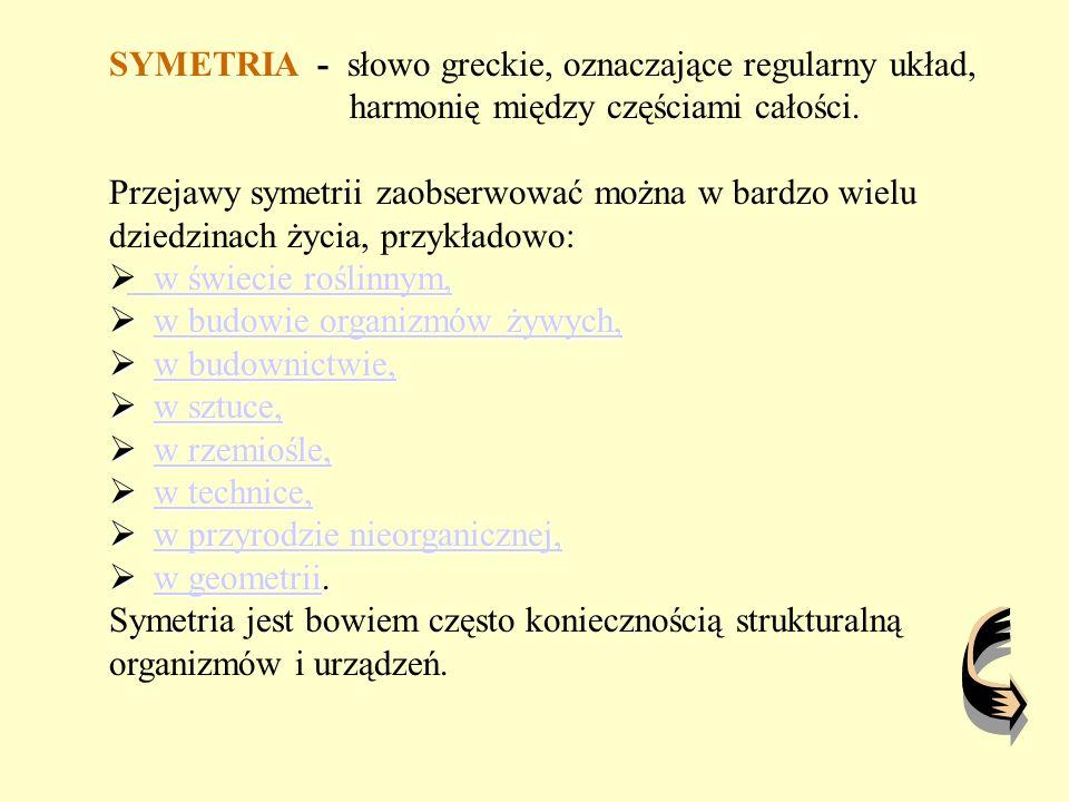 Dorota Gąsiorek Szkoła Podstawowa nr 21 Im.Ks.St. Konarskiego w Częstochowie