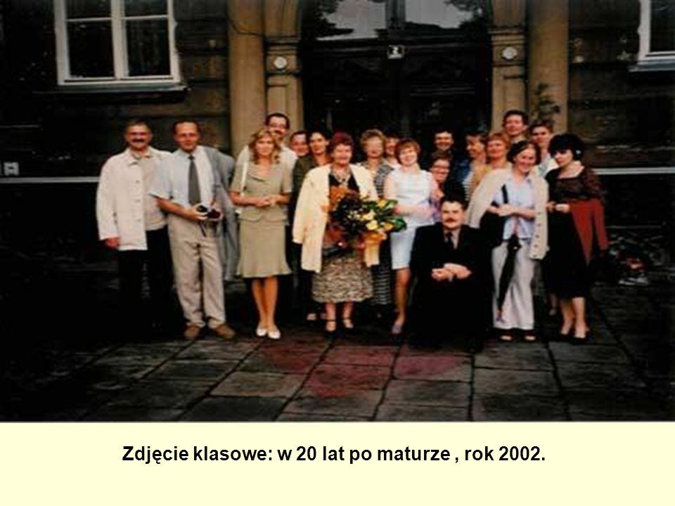 Zdjęcie klasowe: w 20 lat po maturze, rok 2002.