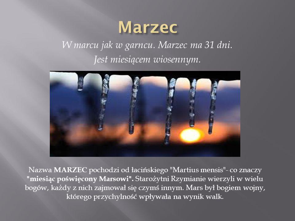 W marcu jak w garncu. Marzec ma 31 dni. Jest miesiącem wiosennym. Nazwa MARZEC pochodzi od łacińskiego