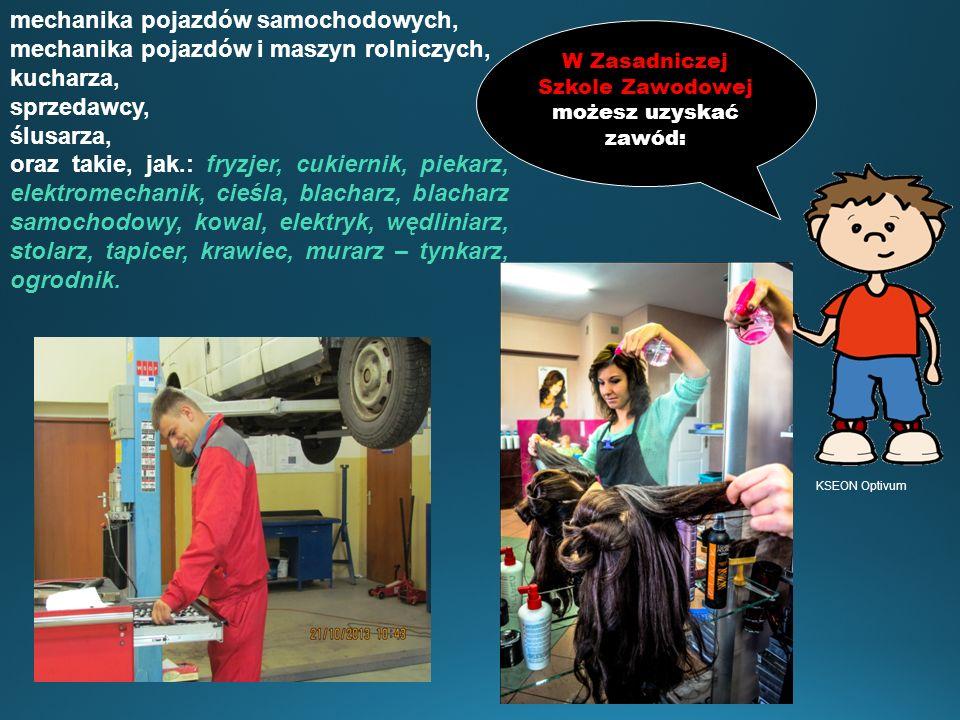 W Zasadniczej Szkole Zawodowej możesz uzyskać zawód: mechanika pojazdów samochodowych, mechanika pojazdów i maszyn rolniczych, kucharza, sprzedawcy, ś