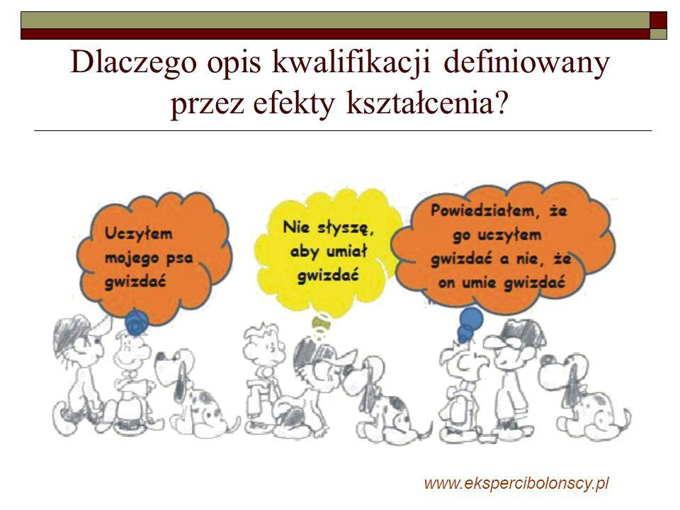 Dlaczego opis kwalifikacji definiowany przez efekty kształcenia? www.ekspercibolonscy.pl