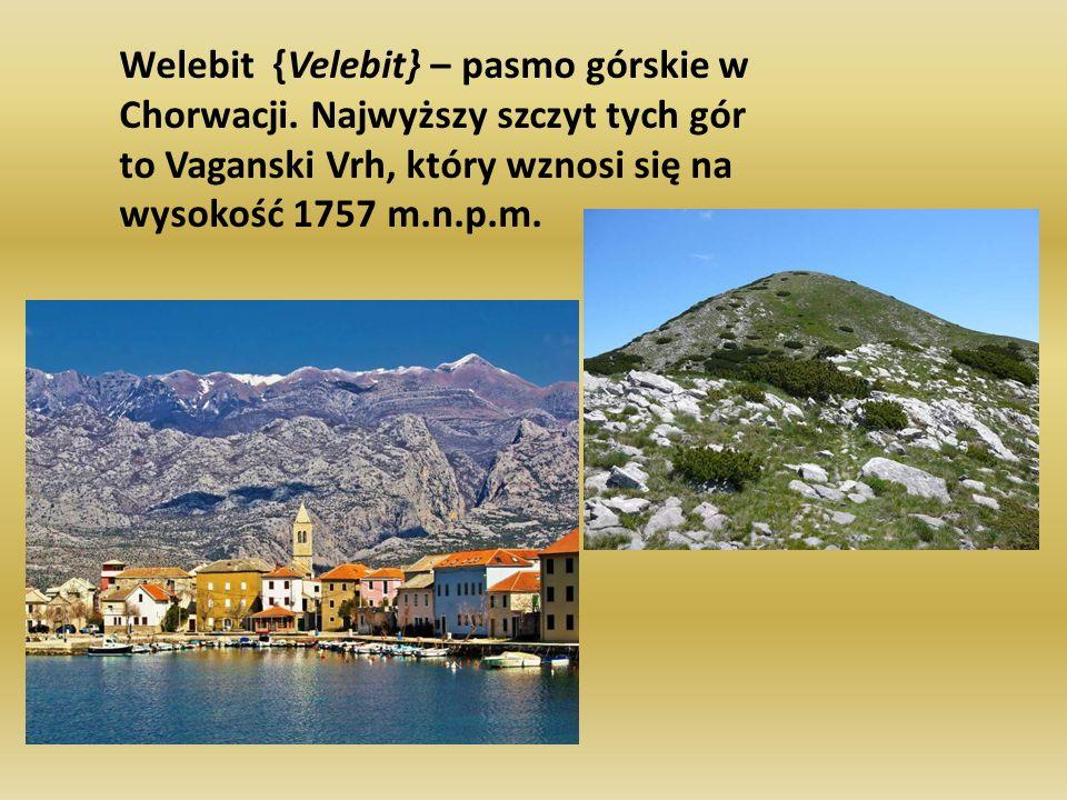 Welebit {Velebit} – pasmo górskie w Chorwacji. Najwyższy szczyt tych gór to Vaganski Vrh, który wznosi się na wysokość 1757 m.n.p.m.
