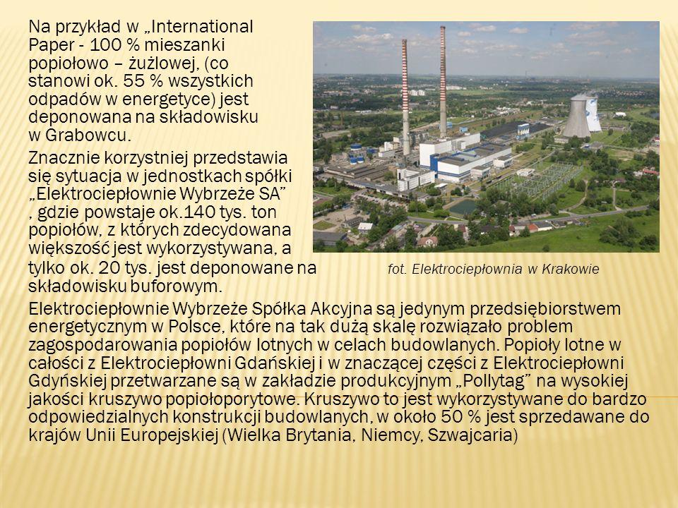 Cześć popiołów lotnych z Elektrociepłowni Gdyńskiej jest składowana na składowisku w Rewie.