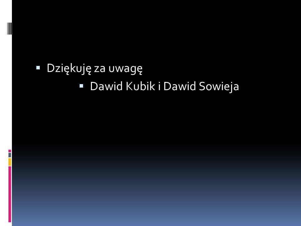 Dziękuję za uwagę Dawid Kubik i Dawid Sowieja